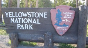 3-Year-Old Killed in Yellowstone from Pocatello