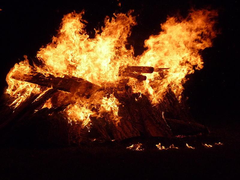 fire_bushes