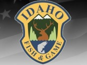 Photo courtesy of the Idaho Fish and Game Facebook Page