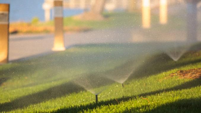Sprinklers_+_good_light_+_400mm_lens_(7894662586)